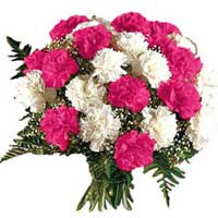 Valentine Flowers to India. Send 12 Pink and White Carnation Bouquet