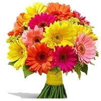 Bouquet Delivery in India. Order to send 24 Mixed Gerbera Bouquet