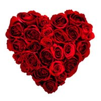 Send Heart Shape Arrangement of 100 Red Roses on Valentine's Day. Valentine Flowers to India