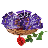 Online 12 Dairy Milk Chocolate Basket With 1 Red Rose Bud. Exclusive Rakhi Gifts to India