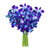Blue Orchids Bouquet Flowers to Dharwad