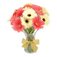 Online Flower Delivery in India. Send 15 Mix Gerbera in Glass Vase