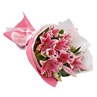 Mothers Day Flower in India :  Pink Lily to India