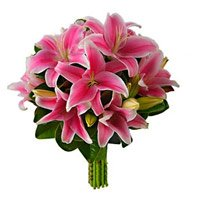 Mothers Day Flowers to India :  Pink Lily to India