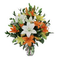 Send Exotic Mix Lily in Vase. Total of 12 Flowers to India