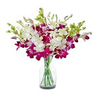 Arrangement of Purple and WHite Orchids in Glass Vase. Total of 10 Flowers to India